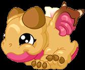 ConchDragonBaby