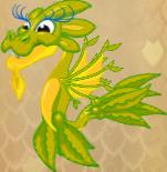SeaweedDragonJuvenile