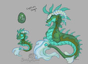 Capricorn Dragon