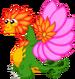 FlowerDragonAdult