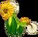 DandelionDragonAdult