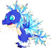 SnowflakeDragonJuvenile4