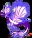 OrchidDragonAdult