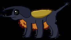 Beetle Dragon Adult