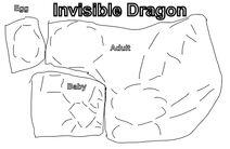 InvisibleDragon