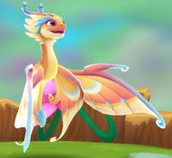 FlutterDragonAdult