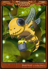 Card insect3