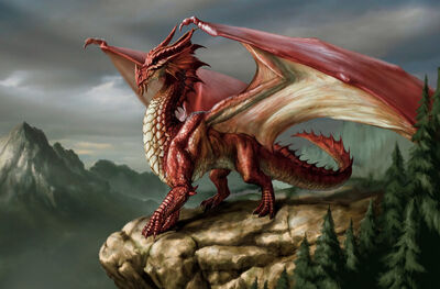 Red Eurpean Dragon
