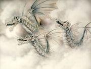 Dragons-1886