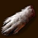 Gegenstand Wolfspfote