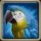 Сапфировый попугай