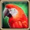 Рубиновый попугай