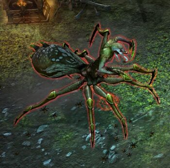 Arachna-N