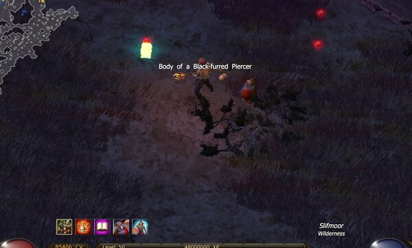 The Wild Hunt 2-3 Body