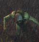 Wandering Corpse