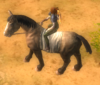 Brown horsey