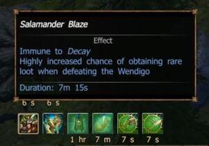 Salamander Blaze buff 5 minutes
