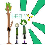 Sherlys IDF