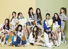 Survival, Find the Momoland - Mnet - 02