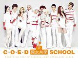 CO-ED SCHOOL