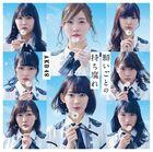 605px-AKB4848LimA