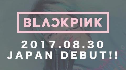 BLACKPINK - STAY (JP Ver