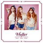 Girls' Generation TTS Holler Cover
