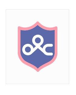 Idol School Shield