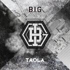 B.I.G - Big Transformer