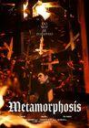 Metamorphosis-2019-08