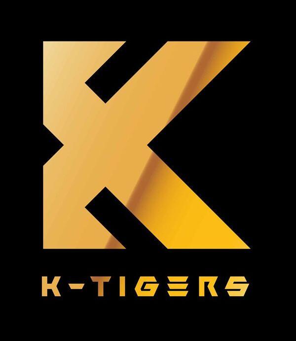 K-Tiggers Taekwondo
