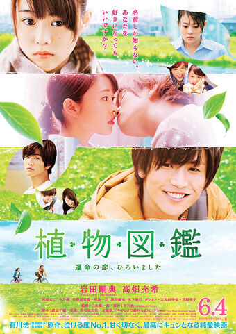 Evergreen Love | Wiki Drama | Fandom