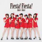 FiestaFiesta-r