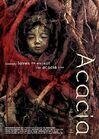 Acacia (1)