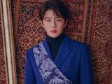 Choi Bo Min