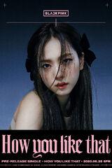 Kim Ji Soo (1995)