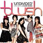 Undivided Single Blush