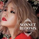 Sonnet Son Sonnet Blooms