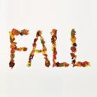 Fall 12