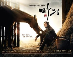 The Horse Doctor