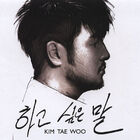 Kim Tae Woo - Words I'd Want To Say