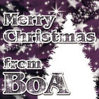 BoA - Merry Christmas from BoA