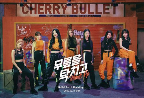 Cherry Bullet5