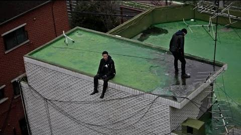 Dynamic Duo - On the roof