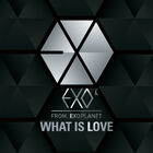 EXO - What Is Love (Kiss)