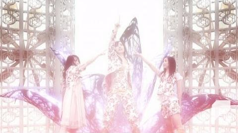 MV Perfume 「Twinkle Snow Powdery Snow」-0