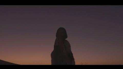 치타(CHEETAH) -'비틀비틀' M V