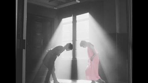 Nissy(西島隆弘) 「花cherie」Music Video