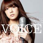 17044-voice-i2p3
