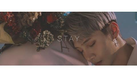 MV Trophy Cat × Edward Avila - Stay